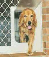 Pet Door Large